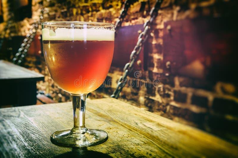 Vidrio de cerveza fresca fotos de archivo libres de regalías