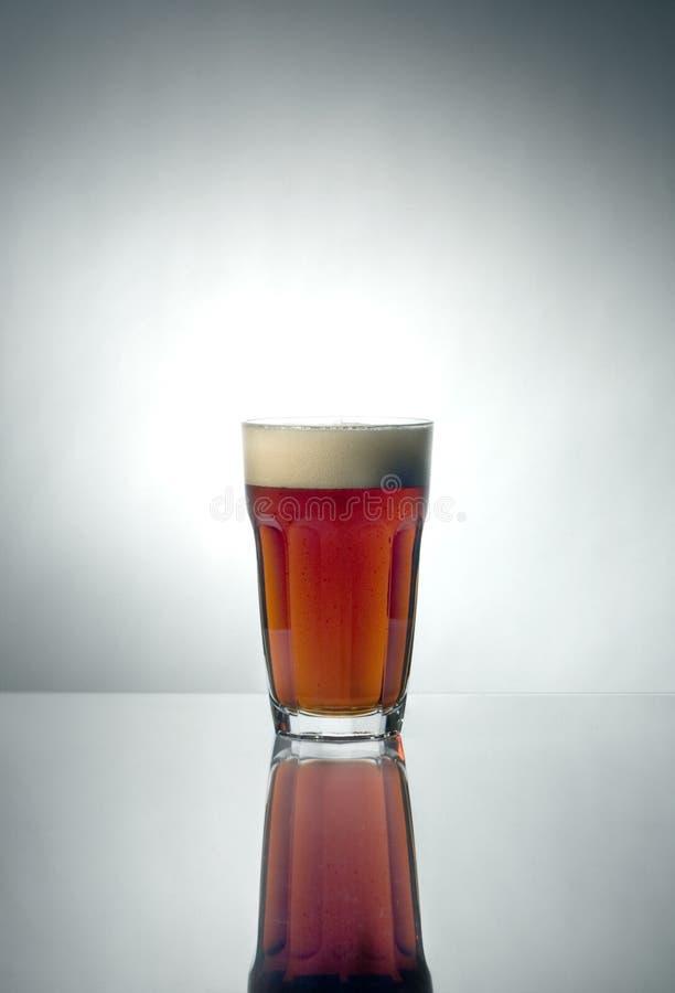 Vidrio de cerveza hecha en casa foto de archivo