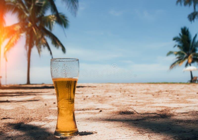 Vidrio de Misted de cerveza fría en la arena en el fondo de palmeras verdes, del cielo azul y de la isla tropical de la costa de  fotografía de archivo