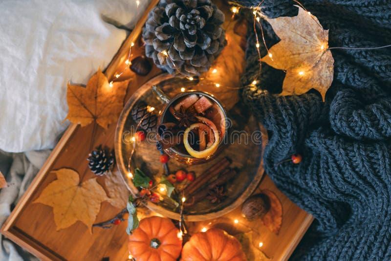 Vidrio de plantas de cocido al vapor al vapor calientes del té y del otoño fotos de archivo