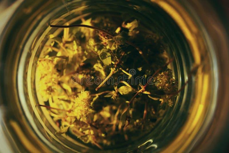 Vidrio de té herbario imagenes de archivo