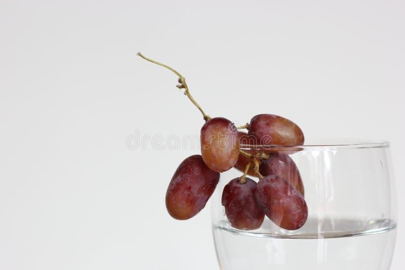 Vidrio de uvas imagen de archivo