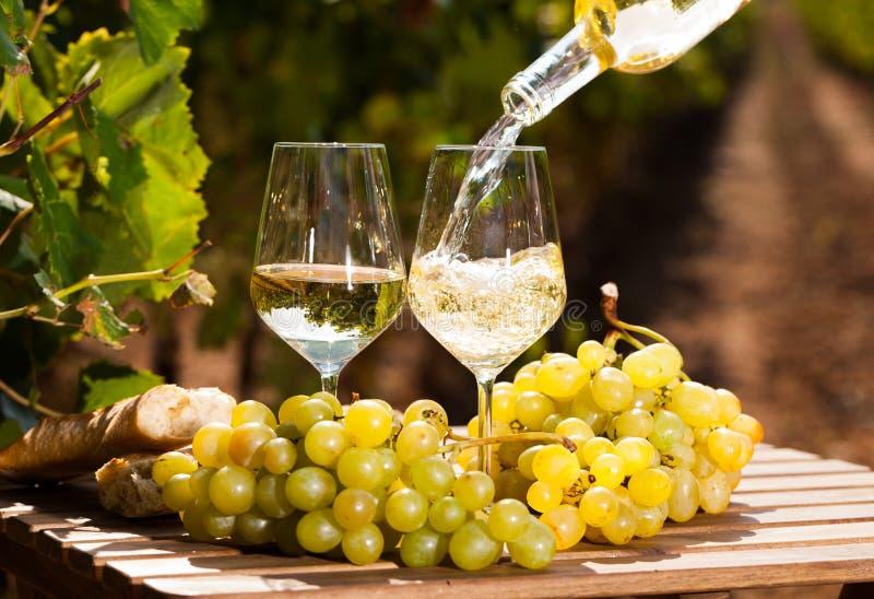Vidrio de uvas maduras y de pan del vino blanco en la tabla en viñedo fotografía de archivo libre de regalías