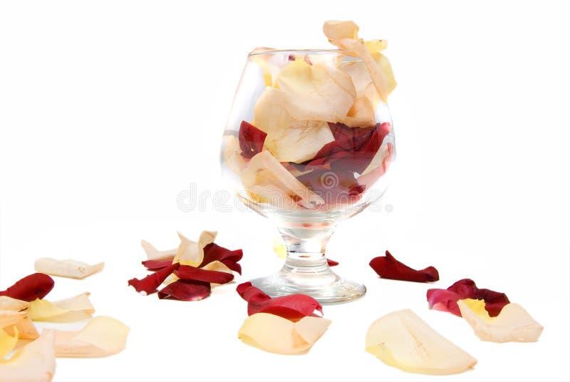 Vidrio del coñac y pétalos de rosas fotos de archivo libres de regalías