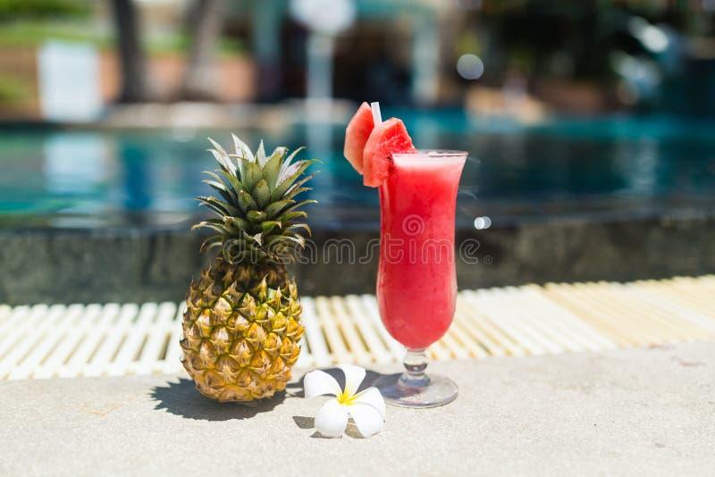 Vidrio fresco de la bebida y de la situación tropical cerca de la piscina - concepto del smoothie de la sandía de la flor del plu fotografía de archivo libre de regalías