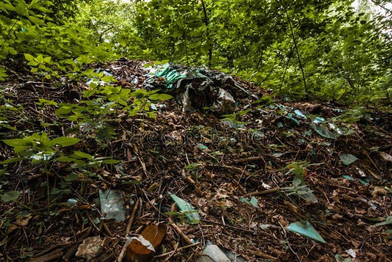 Vidrio quebrado en la tierra en el bosque muestras de la intervención humana en naturaleza imagen de archivo