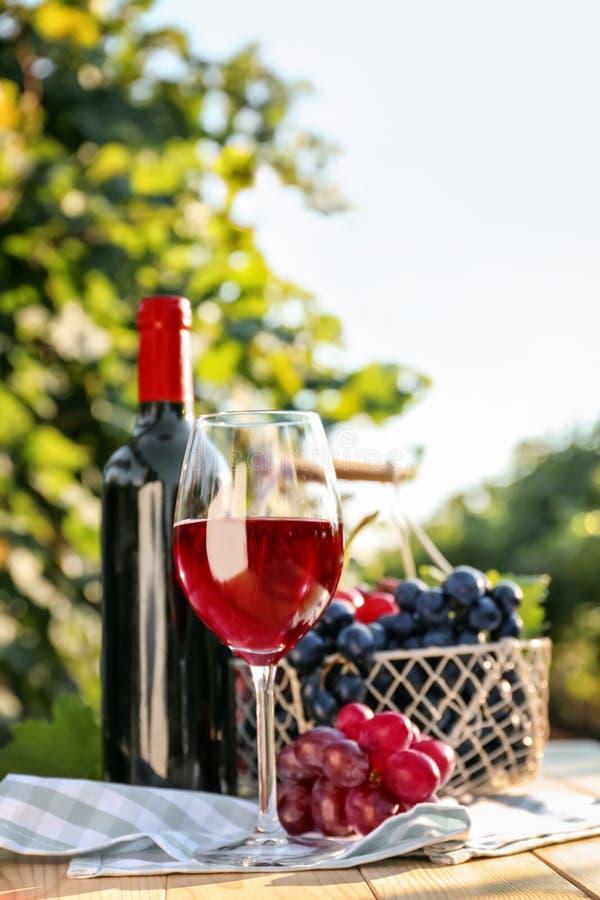 Vidrio y botella de vino tinto con las uvas frescas en la tabla de madera en viñedo fotos de archivo