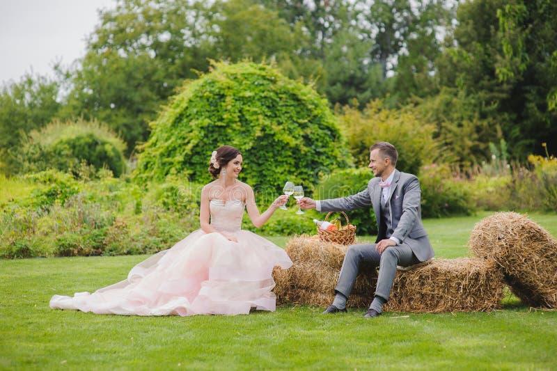 Vidrios de vino de la explotación agrícola de novia y del novio foto de archivo