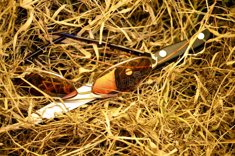 Vidrios y cuchillo en hierba seca fotografía de archivo libre de regalías