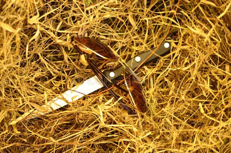 Vidrios y cuchillo en hierba seca fotografía de archivo