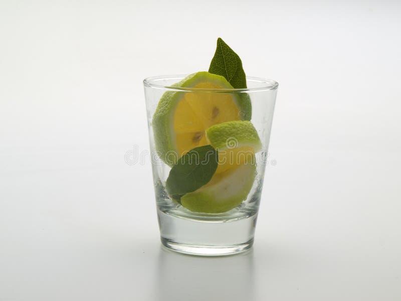 Vidro cônico de vidro com folhas e limão de hortelã para dentro imagens de stock