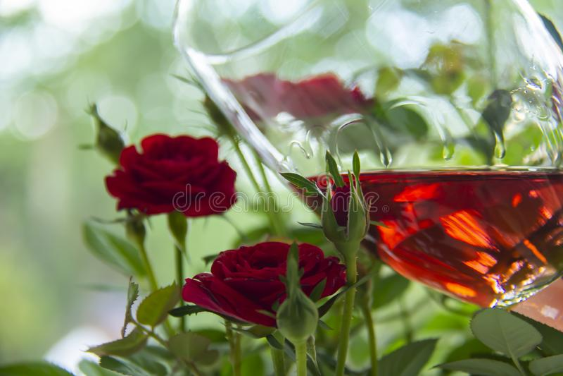 Vidro cor-de-rosa bonito do vinho com as rosas no fundo borrado Dia do `s do Valentim Dia de matrizes Presente romântico Amor foto de stock royalty free