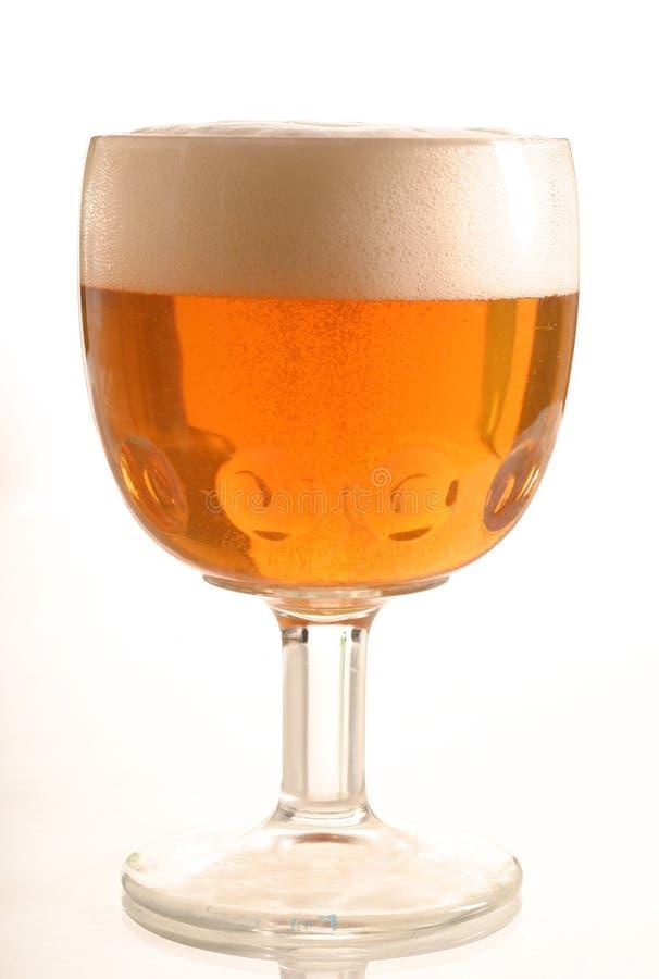 Vidro da cerveja 2 imagens de stock