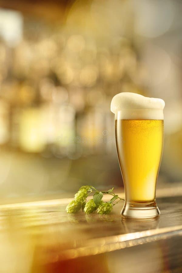 Vidro da cerveja em uma tabela em uma barra imagem de stock