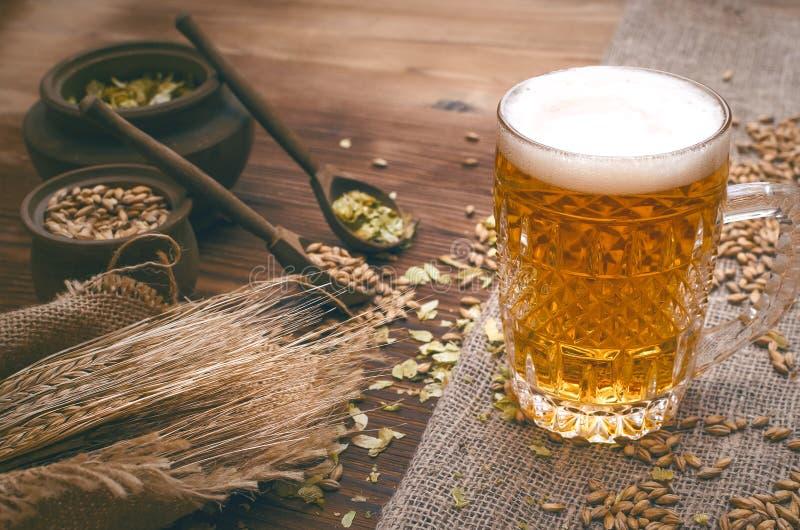 Vidro da cerveja espumoso, do malte e do lúpulo imagem de stock
