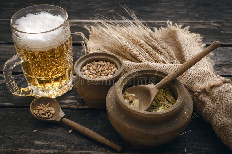 Vidro da cerveja espumoso, do malte e do lúpulo imagem de stock royalty free
