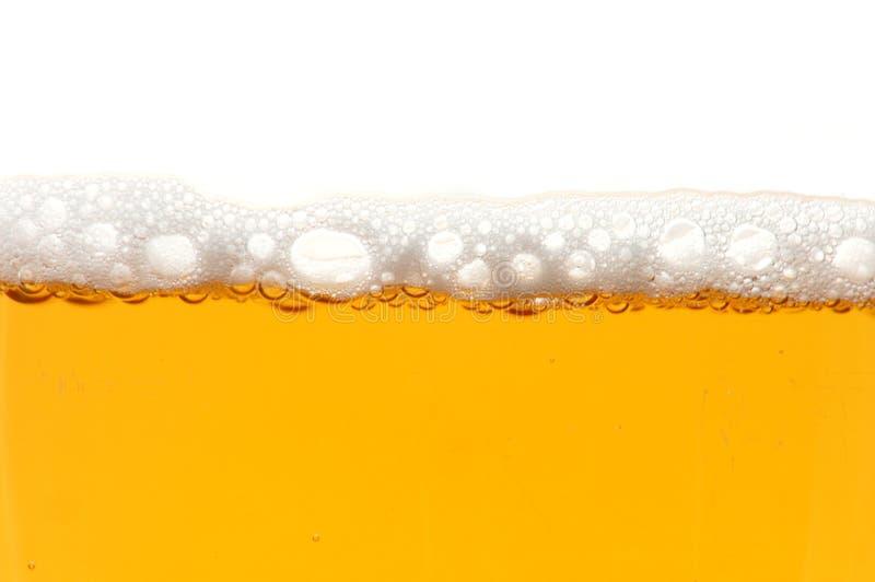 Vidro da cerveja isolado no fundo branco imagens de stock