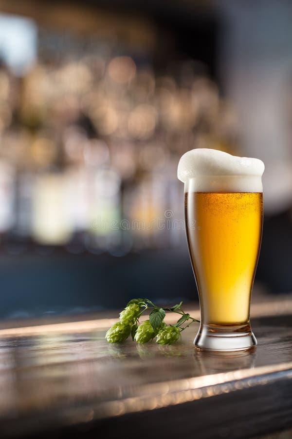 Vidro da cerveja na tabela de madeira e no fundo borrado fotos de stock