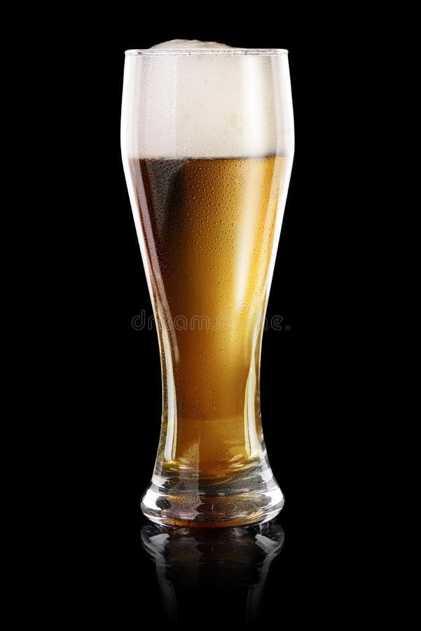 Download Vidro da cerveja no preto foto de stock. Imagem de reflexão - 65576590
