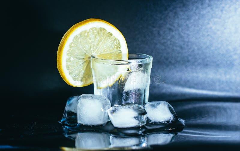 Vidro da gim, do gelo e do limão imagens de stock