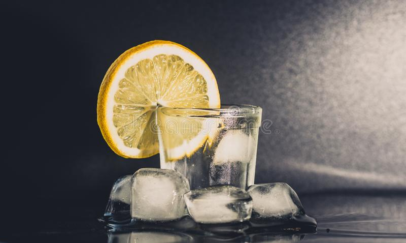 Vidro da gim, do gelo e do limão fotos de stock