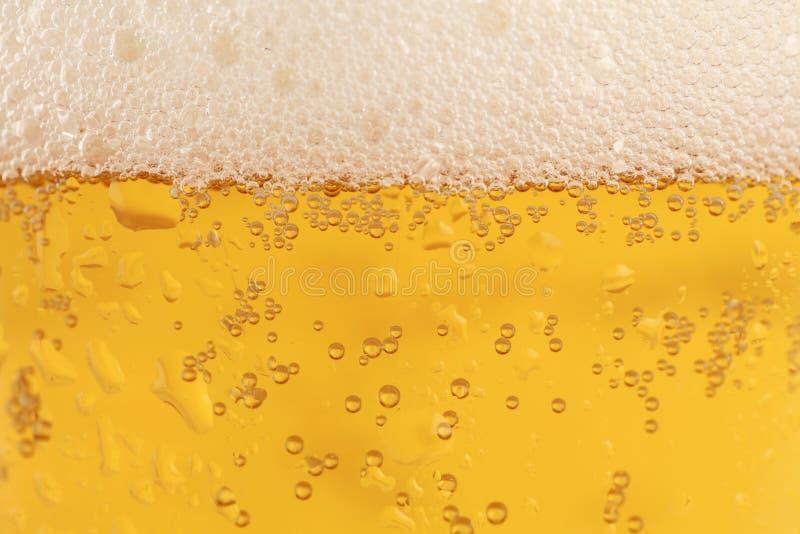 Vidro de cerveja fotografia de stock