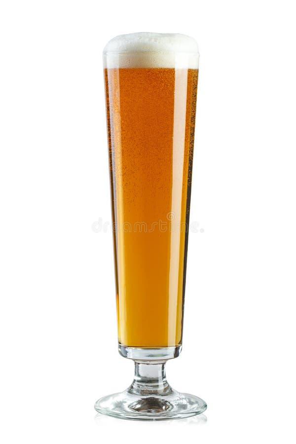 Vidro de cerveja alto fotos de stock