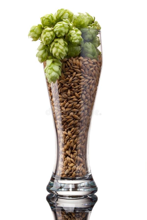 Vidro de cerveja com ingredientes fotos de stock royalty free