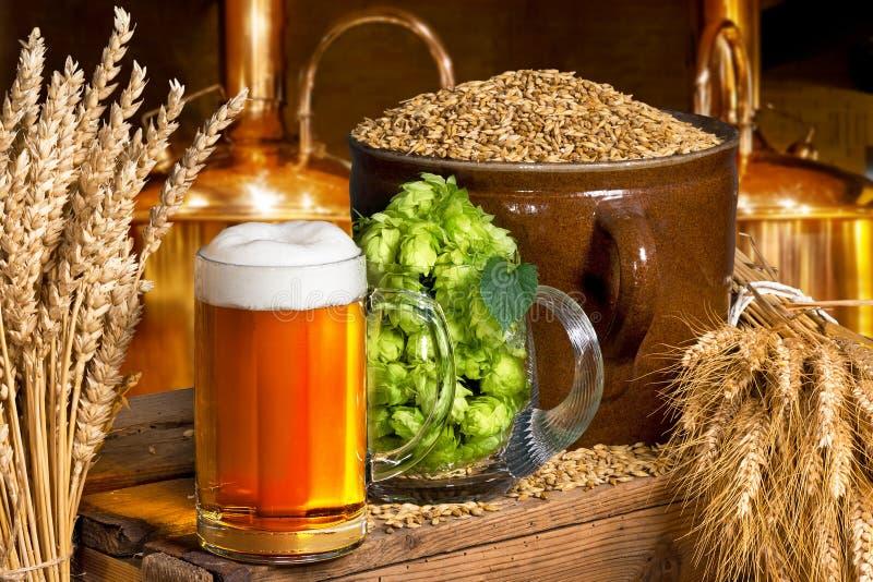Vidro de cerveja com lúpulos e cevada imagens de stock royalty free