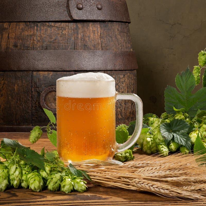 vidro de cerveja e cones de lúpulo imagem de stock
