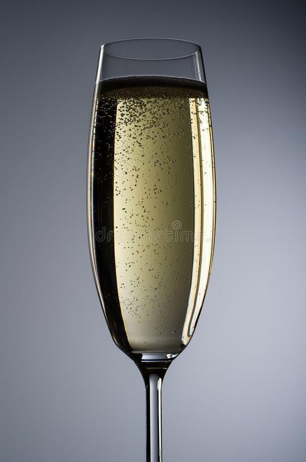 Vidro de Champagne antes do fundo cinzento fotografia de stock