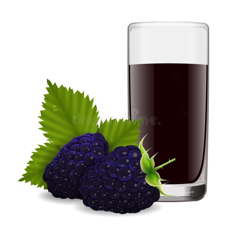 Vidro de refrescar o suco delicioso da amora-preta madura ilustração royalty free