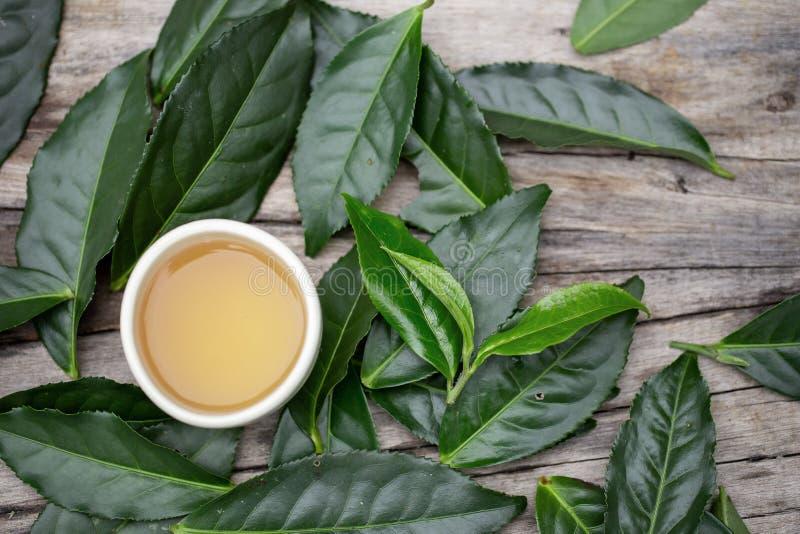 Vidro do chá em uma tabela de madeira e em umas folhas de chá verdes frescas imagem de stock