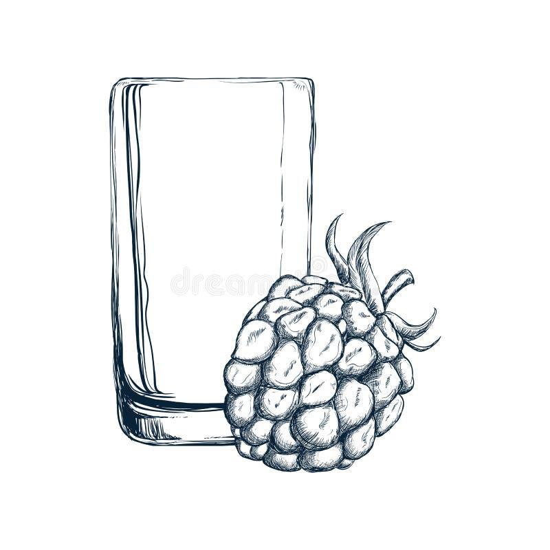 Vidro do projeto do suco e da amora-preta ilustração stock