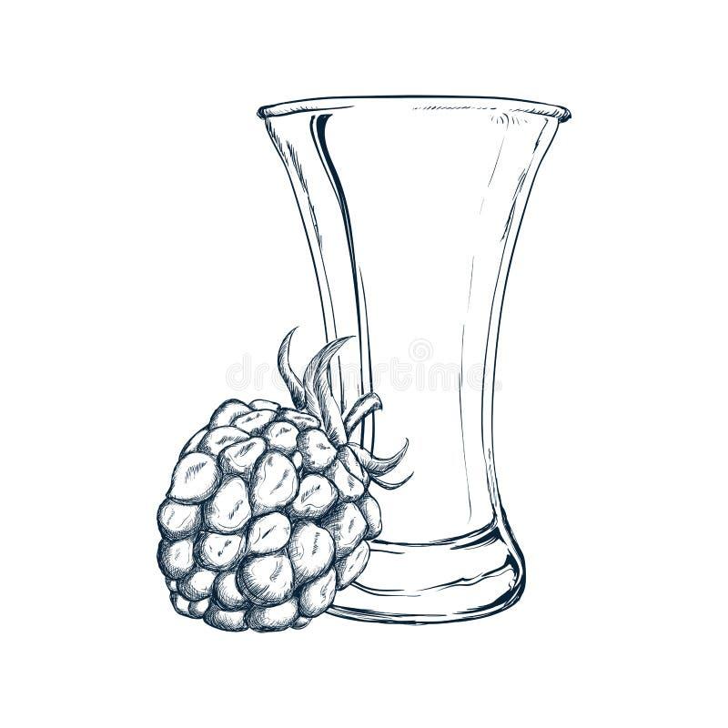 Vidro do projeto do suco e da amora-preta ilustração do vetor