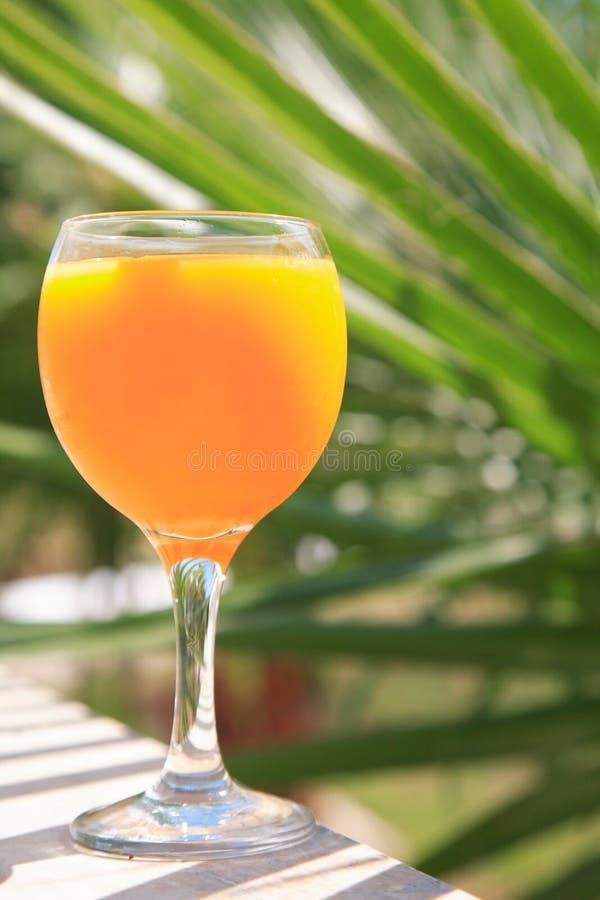 Download Vidro do sumo de laranja foto de stock. Imagem de vidro - 10058908
