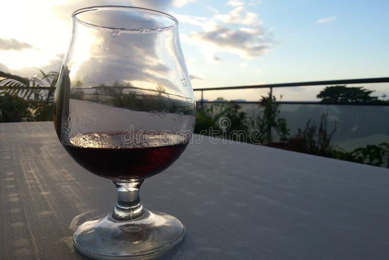 Vidro do vinho tinto sob o trópico fotografia de stock royalty free