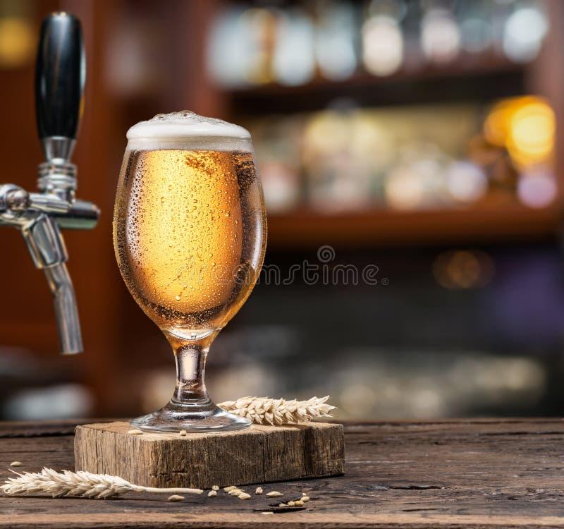 Vidro refrigerado da cerveja clara no contador da barra foto de stock