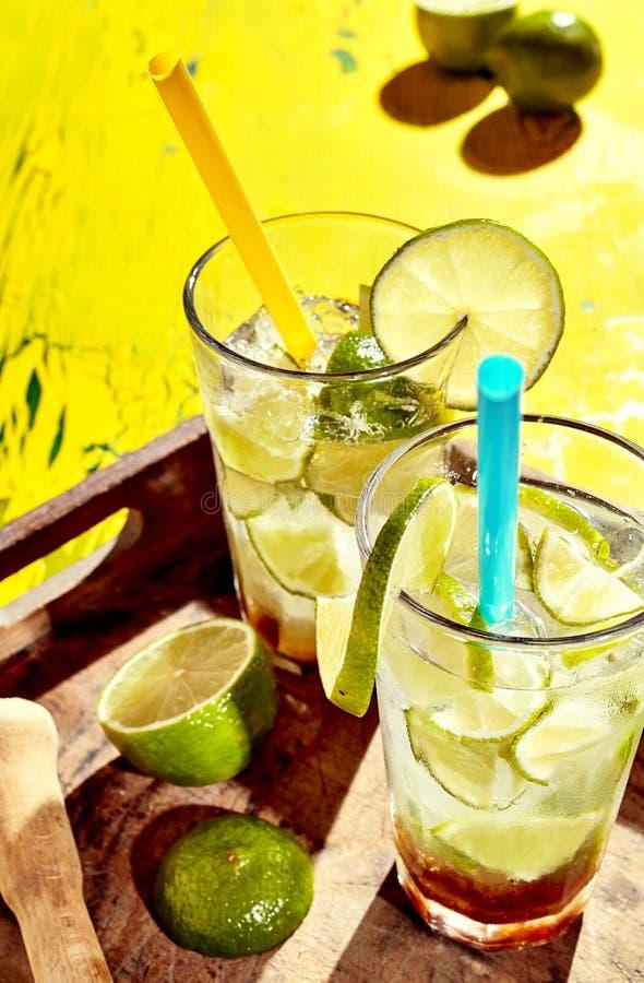 Vidros completamente de fatias, de gelo e de álcool do limão imagens de stock royalty free