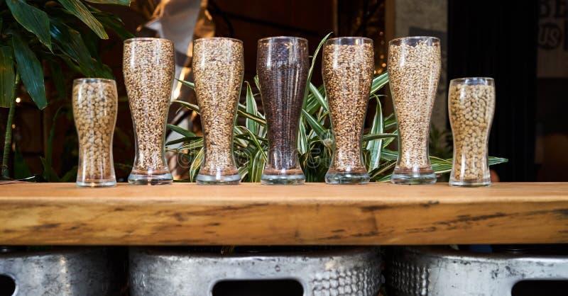 Vidros de cerveja enchidos com os maltes e os l?pulos diferentes, close-up imagem de stock royalty free