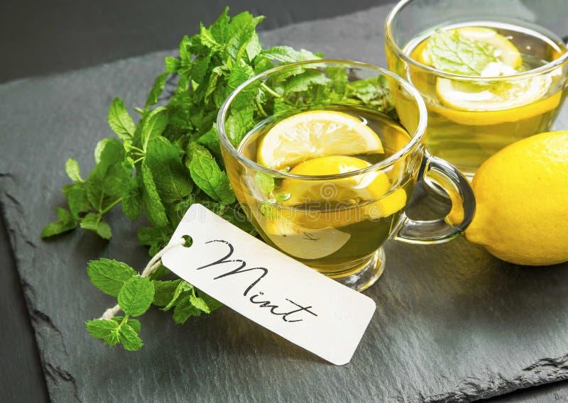 Vidros do chá do limão e da hortelã com etiqueta da hortelã e as folhas frescas imagem de stock
