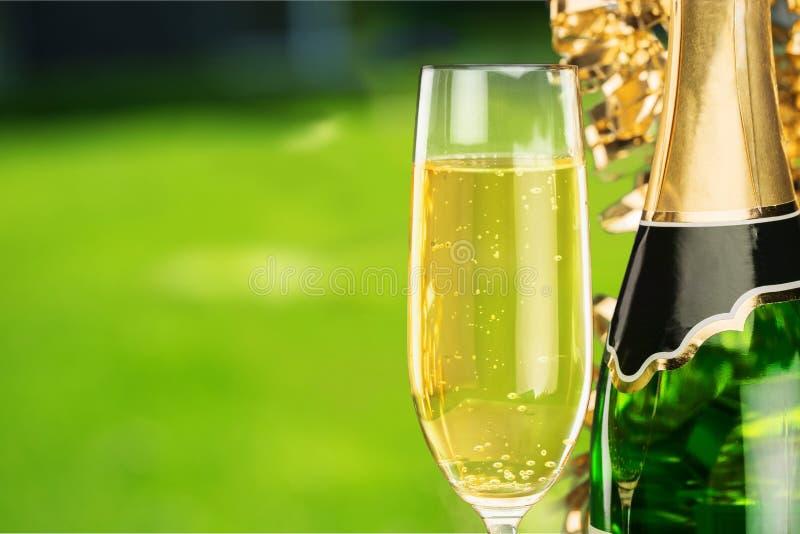 Vidros e garrafa de Champagne no jardim fotografia de stock royalty free