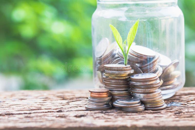 Vidros e moedas na tabela com fundo verde fotografia de stock