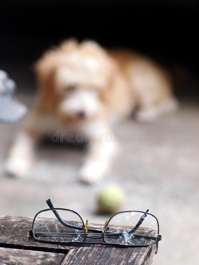Vidros superiores da lente plástica barata preta que colocam em uma tabela de madeira velha fotos de stock