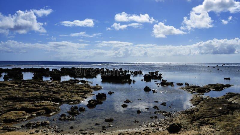 Vidsträckt Stillahavs- royaltyfria bilder