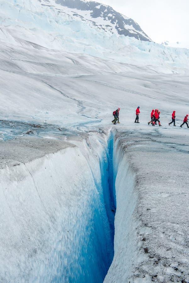 Vie au bord d'un glacier photographie stock libre de droits