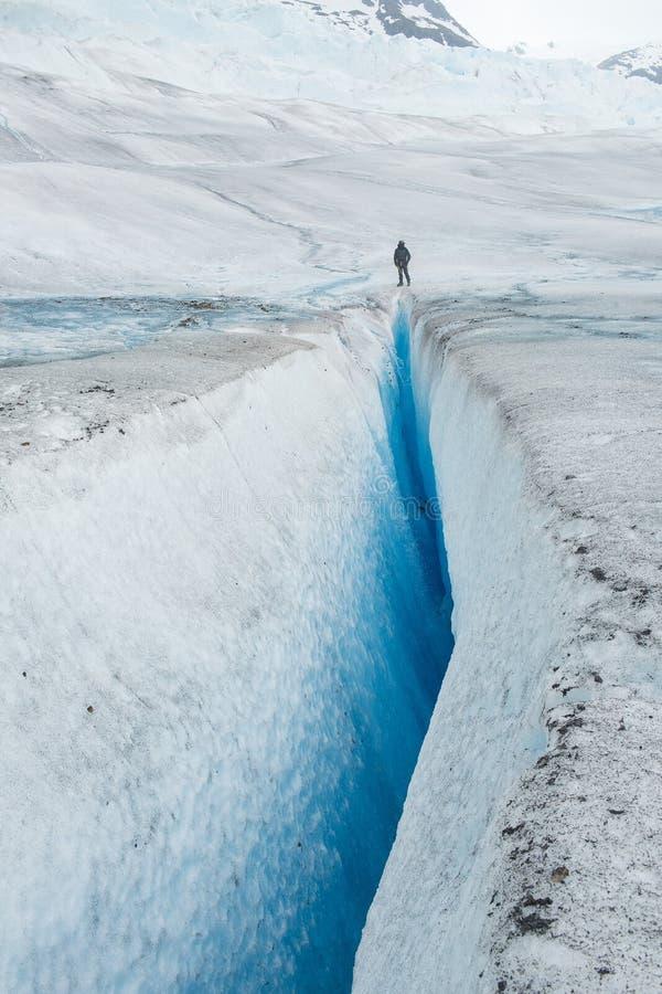 Vie au bord d'un glacier image libre de droits