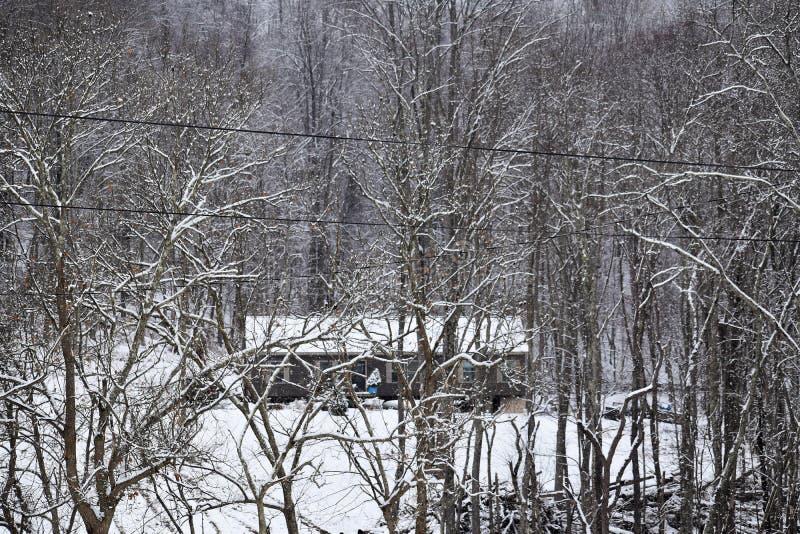 Vie dans les bois de la Virginie Occidentale images libres de droits
