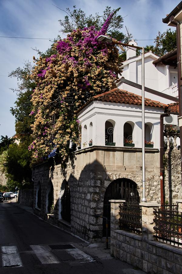 Vie di Castelnuovo Vicolo nel Montenegro immagine stock libera da diritti
