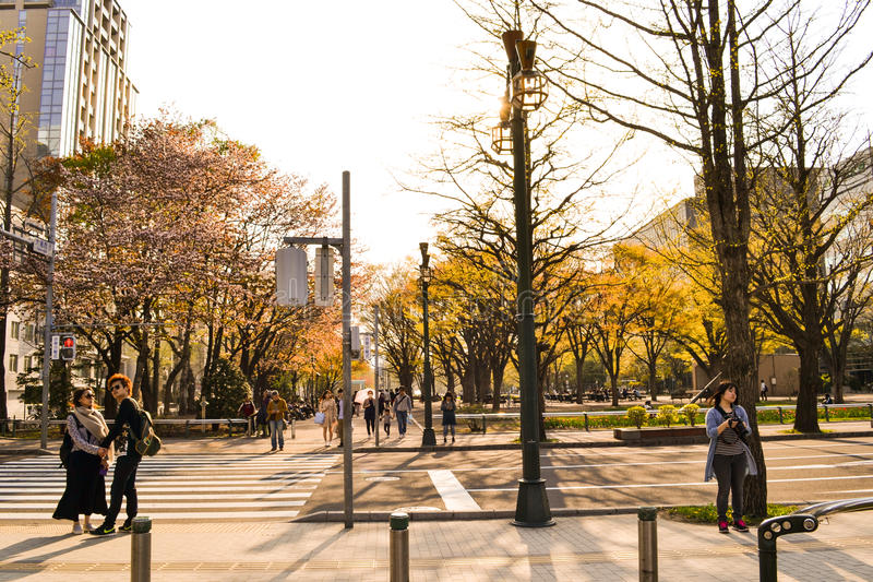 Vie di Hokaido con la gente immagine stock libera da diritti